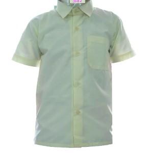 Gokul shirt
